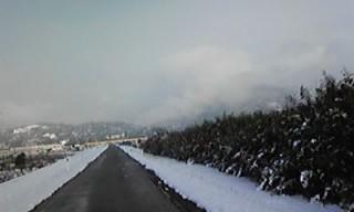 まるで雪〜国!